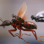 Nieuwe Marvel's Ant-Man and The Wasp trailer