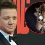 Jeremy Renner gecast in Spawn film
