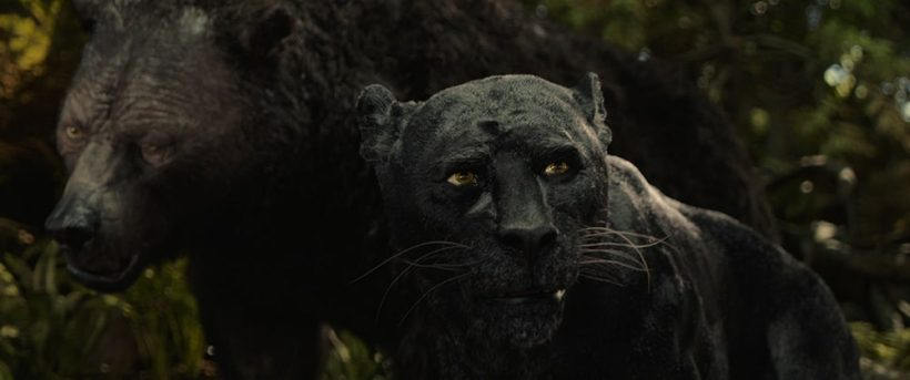 Recensie   Mowgli: Legend of the Jungle (Sandro Algra) 2