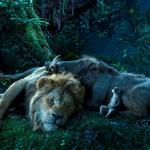 Nieuwe foto's voor Disney's live action The Lion King