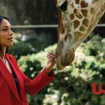 Trailer voor USA Network's Briarpatch met Rosario Dawson
