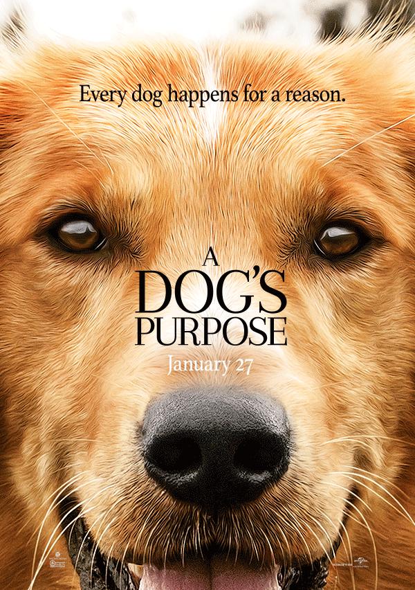 Prijsvraag A Dog's Purpose
