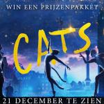 Winactie | Cats – Beëindigd