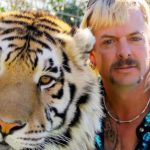 Nicolas Cage als Joe Exotic in Tiger King serie