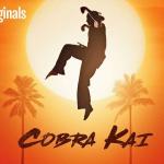Karate Kid-serie Cobra Kai te zien op Netflix