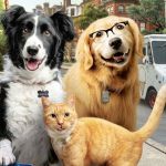 Cats & Dogs: Slaan de Pootjes Ineen! | Vanaf 9 december in de bioscoop
