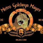 MGM Studios wil de volledige filmbibliotheek en studio verkopen