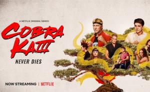 Recensie Cobra Kai seizoen 3