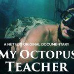 Recensie | My Octopus Teacher (Marlijn Taal)