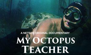 My Octopus Teacher recensie