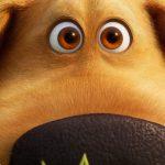 Trailer voor Disney en Pixar's Dugs Dagen