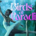 Birds of Paradise vanaf 24 september op Amazon Prime Video